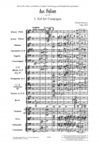 R.シュトラウス「イタリアから」スコア1ページ(第1楽章)
